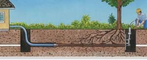 Arlington Trenchless Sewer Repair